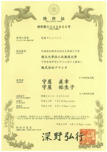 japan-5242855