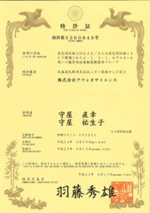 japan-5360849