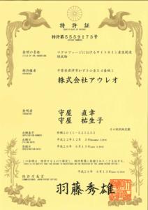 japan-5559173