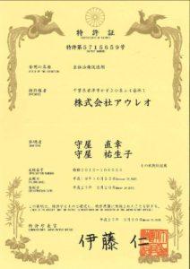 japan-5715659