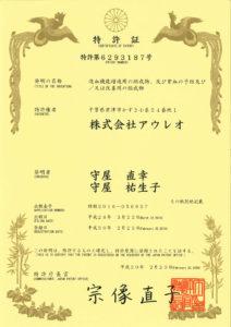 japan-6293187